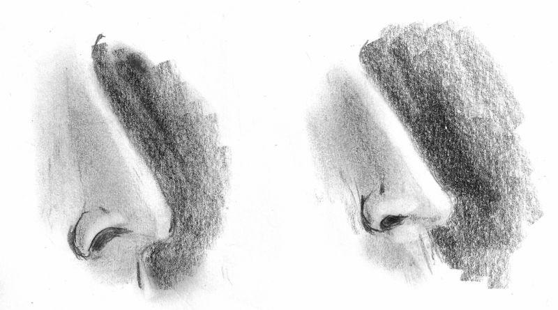Bleistiftzeichnung von zwei Nasen